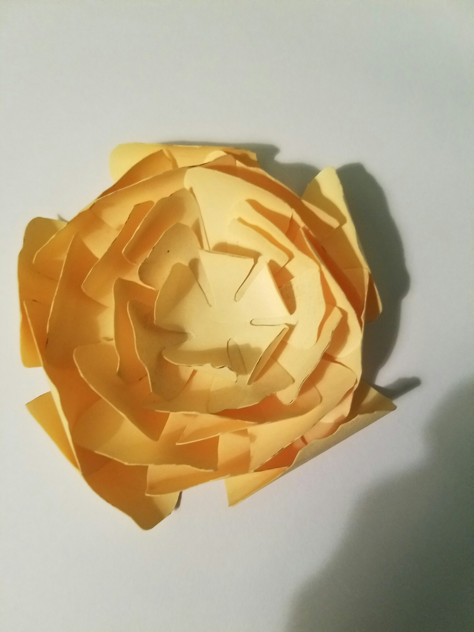 Paper Flowers On Canvas Diy Budget Party Planning